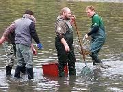 Z rybníku Dymák vytáhli rybáři kapry, amury i líny