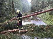 Hasiče na Šumpersku zaměstnala silná bouřka. Padaly stromy, létaly střechy