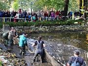 Pivovarské rybníky vydaly svá tajemství. Podívejte se